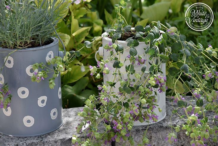 Upcycling - Blumentöpfe aus Farbdosen