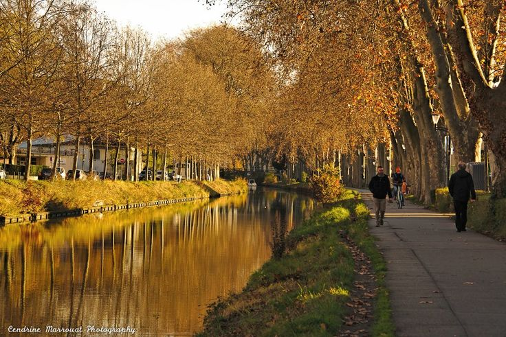 A visit to France - Toulouse (6)