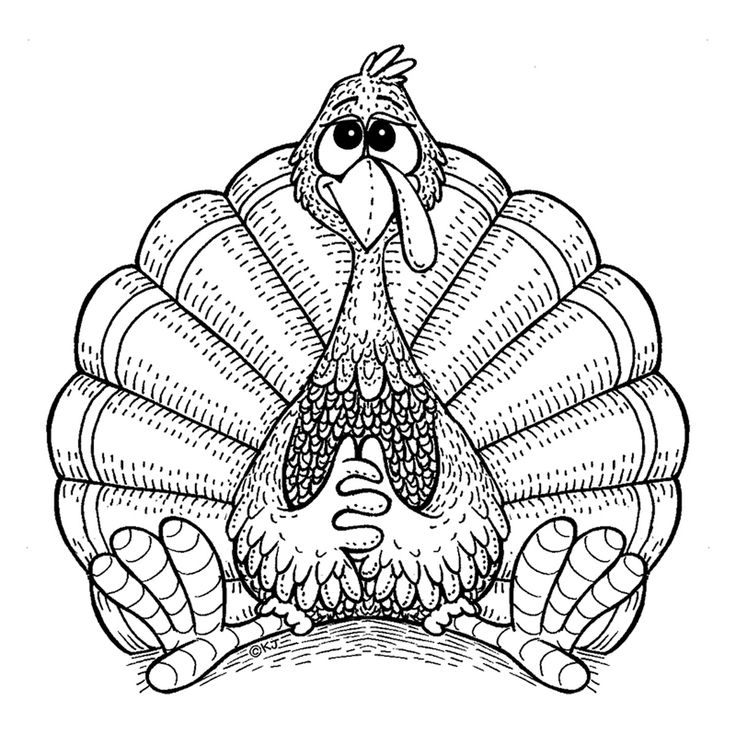 3014 best Coloring Pages images on Pinterest Coloring books, Adult - best of realistic thanksgiving coloring pages