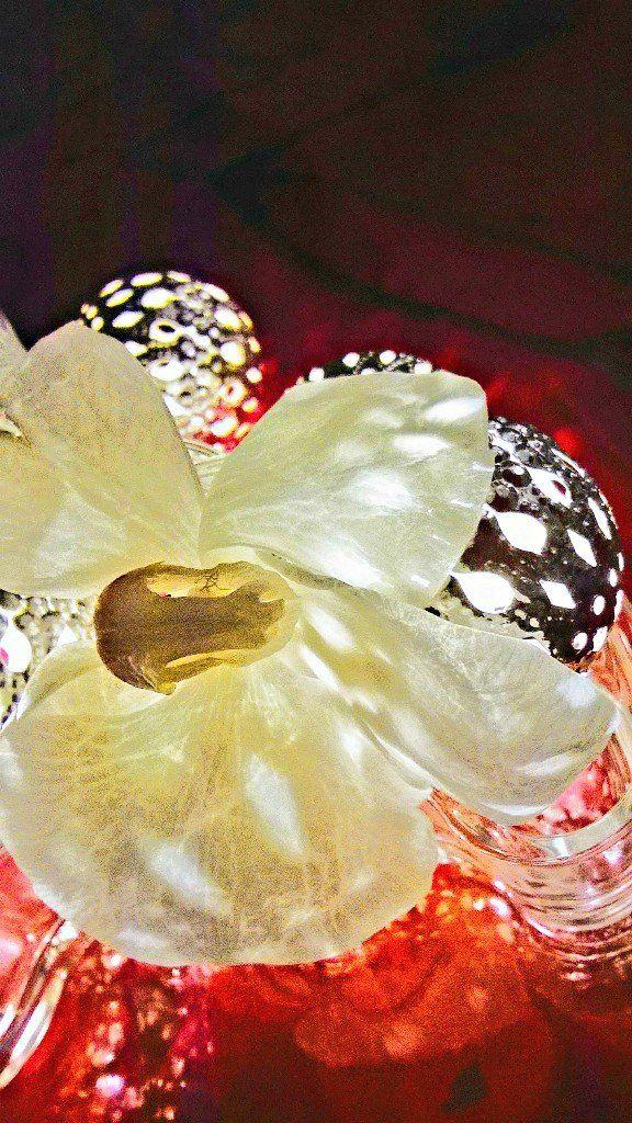 orkidea satuylavaara - Twitter-haku