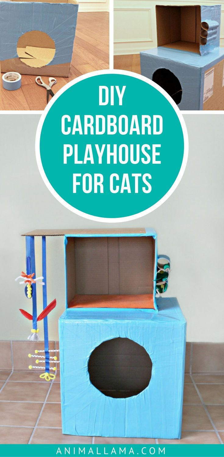Do you want to get creative and make something special for your feline? Make this simple DIY cardboard cat playhouse that will provide your cat with hours of entertainment! #cats #diy #diypets #pets #cardboard #toys