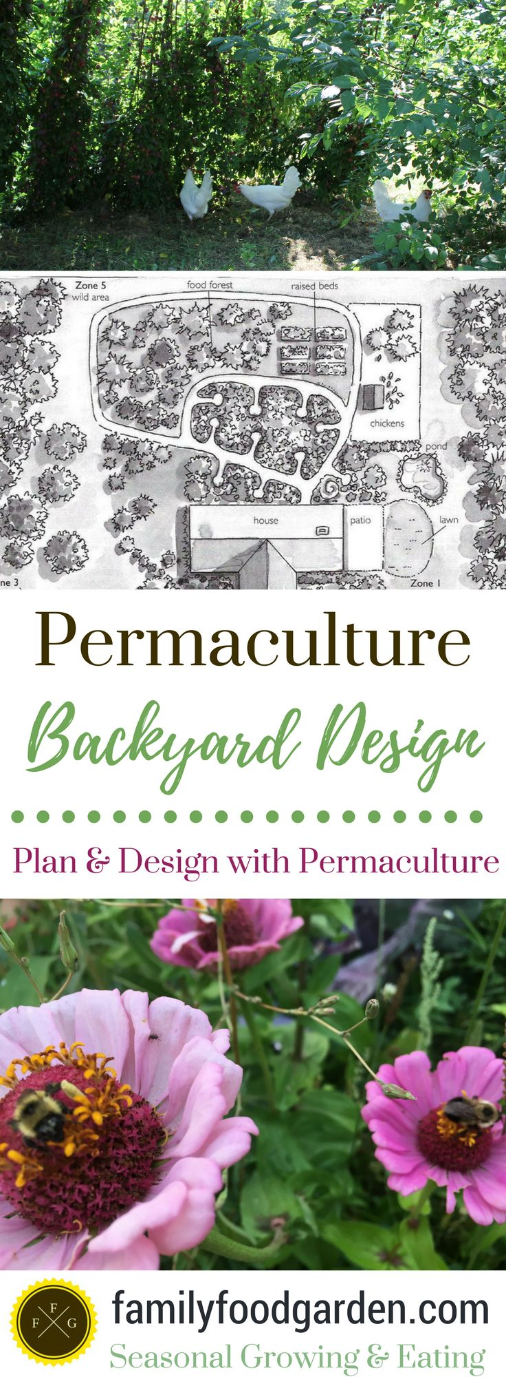 Use Backyard Permaculture Design to create an amazing garden! Backyard permaculture design principles & backyard permaculture design books help you