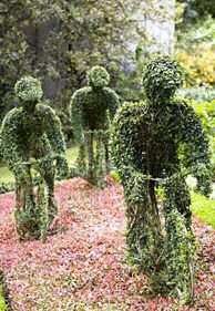 Tour de france topiary