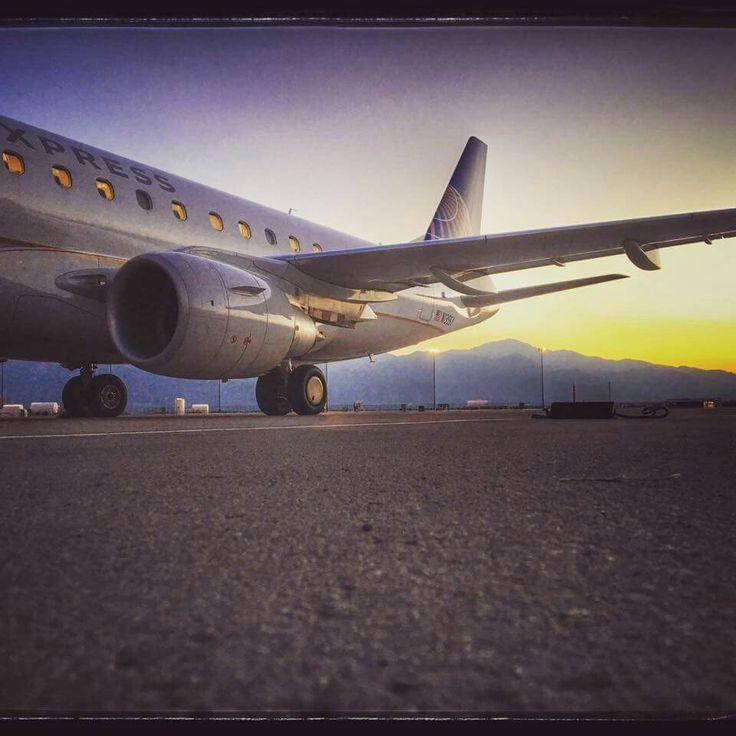8 best Flight Attendant Jobs images on Pinterest Flight - flight attendant job description