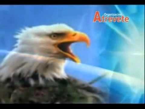 La Renovación del Aguila (Video Motivacional)