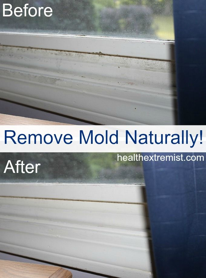 Find out how to get rid of mold naturally in 3 easy ways using ingredients in your kitchen or essential oils. Check out my before and after picture!