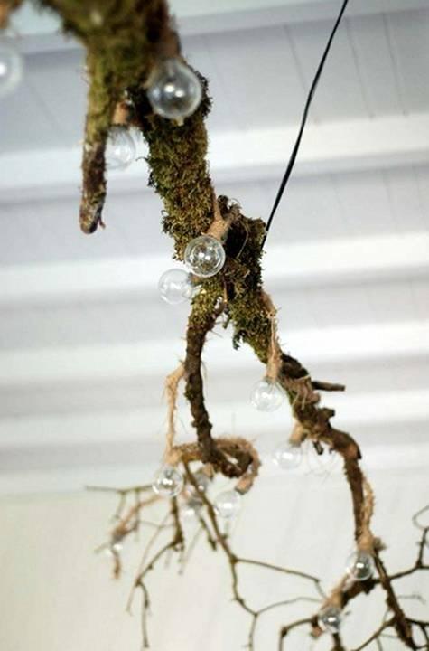 branch as chandelier