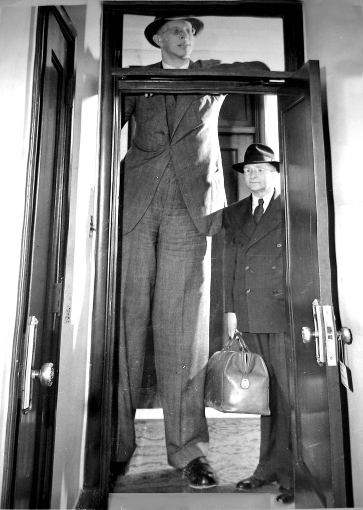robert wadlow is 8 feet 9 1 2 inches tall his father is 5 feet 11 1 2 http www. Black Bedroom Furniture Sets. Home Design Ideas