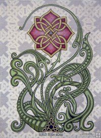 Celtic and Fantasy art in Cast Paper by Kevin Dyer Wild Irish Rose 26 x 36 Woven Tapestry - This is an original design of mine inspired by the traditional song. This is produced on a large commercial computerized loom. The people I have found to do this are a story unto themselves. When globalization of the textile industry took away most of the textile jobs in the Carolinas, this