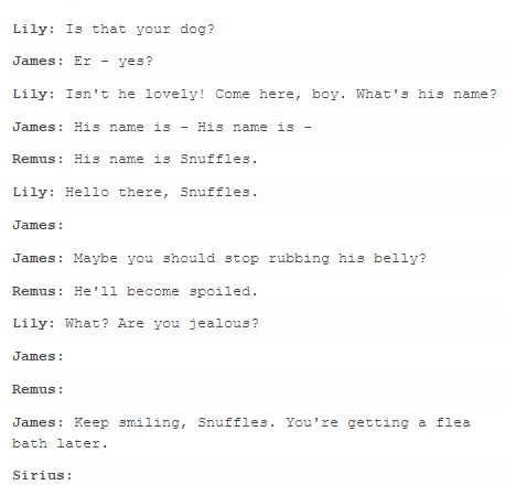 the marauders and lily HAHA XDD I CAN SEE THIS.