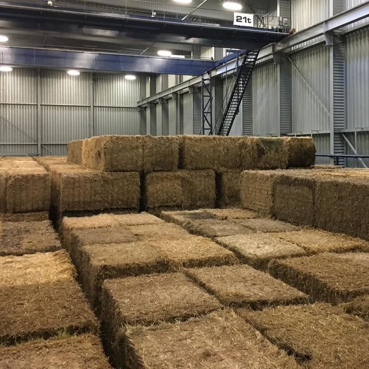 Hundreds of bales of straw a byproduct from agriculture ... #orsted #ørsted #avedøreværket #straw #strawbale #greenenergy #powerplant #renewableenergy #renewables