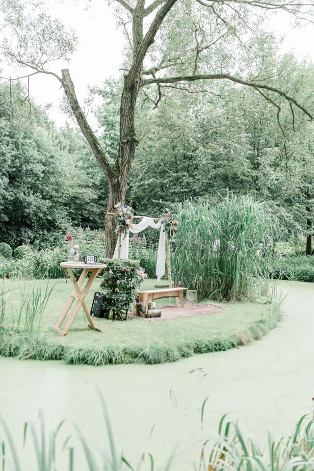 Credit: Jessica Fotografie - boom (plant), natuur, tuin, landschap, hout, plant, geen persoon, park, buitenshuis, blad, bloem (plant), seizoen, zomer