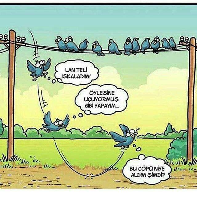 #fenerbahçe #troll #mizahi #pepe #youtube #şiir #şair #gt #takibetakip #besiktas #galatasaray #komedi #istanbul #ankara #izmir #karikatur #penguen #uykusuz #leman #vine #komik #almanya #berlin #taksim #karikatür #eglence #makara #mizah #komikfoto http://turkrazzi.com/ipost/1524835982547969032/?code=BUpTj9IgWQI