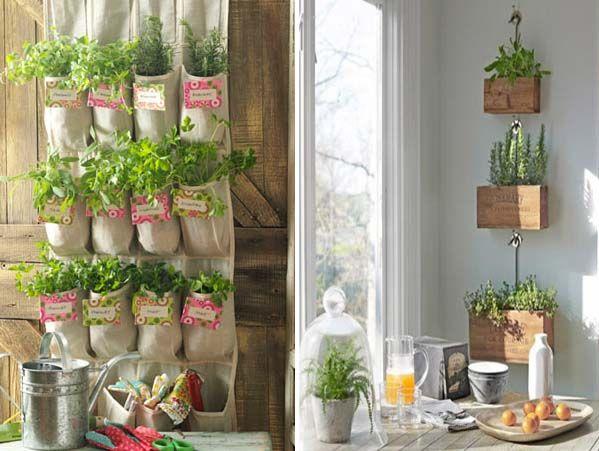 Fűszernövények nevelése otthon – 15 kreatív ötlet