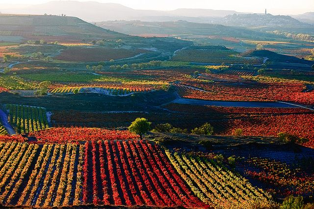 La Rioja, Spain-headed there this summer and can't wait!!