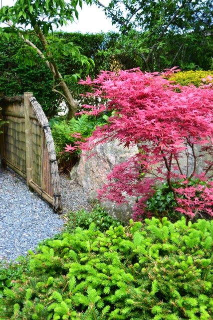 Japanese Garden, Den Kreative Have, Jylland, Denmark Photo: Eira Fogelberg
