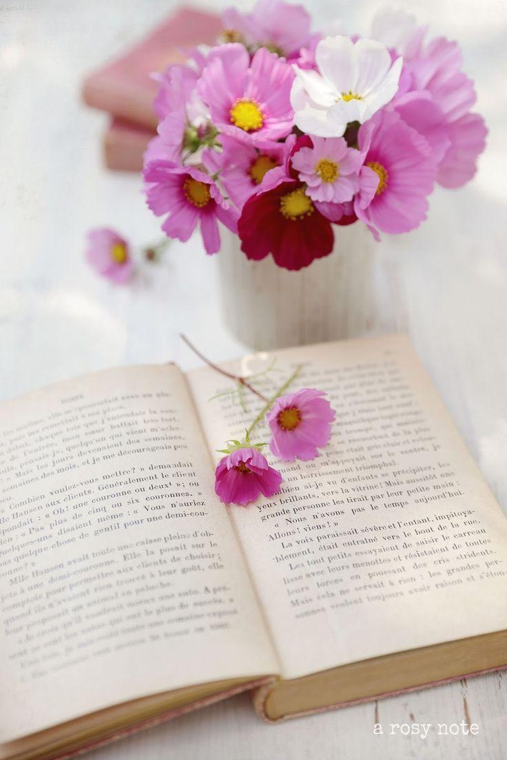Анимации блестяшки, картинки книга и цветы и радуга