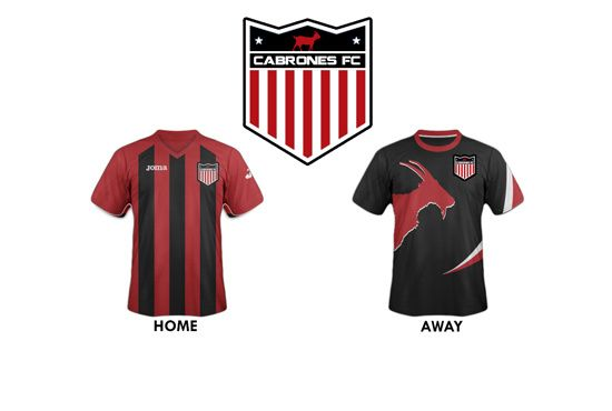 design a unique sports team logo by timberflynn
