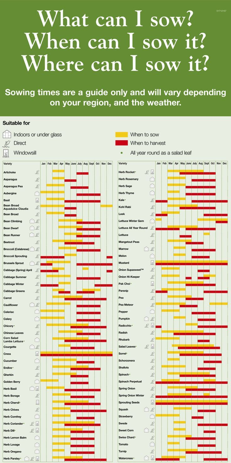vegetable planting chart | Gardening | Pinterest