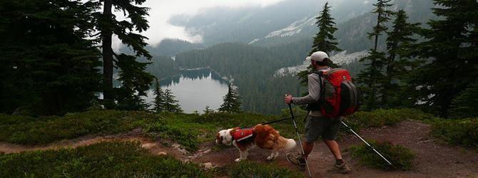 dog trekking, Senderismo, montañismo, hiking, travesias, acampada,... con perros