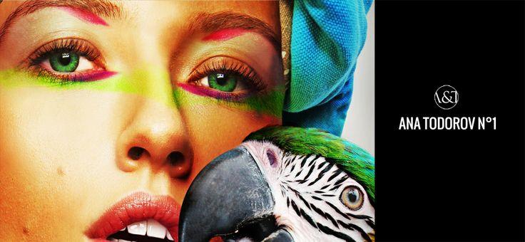 http://blog.anatodorov.com/2014/05/09/pomalowana-czyli-kolorowa-podroz/