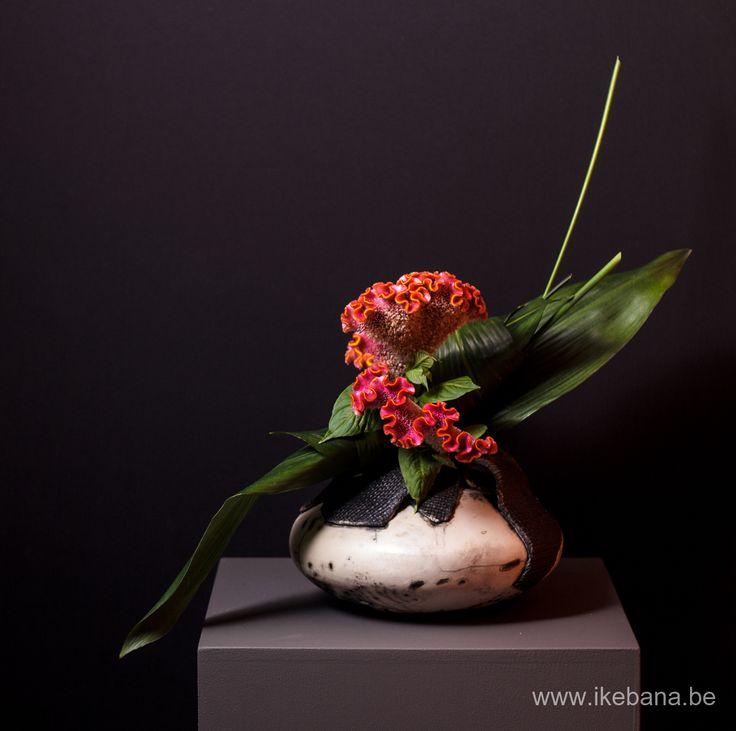 Ikebana arrangement by Ilse Beunen at exhibition nearby Ghent