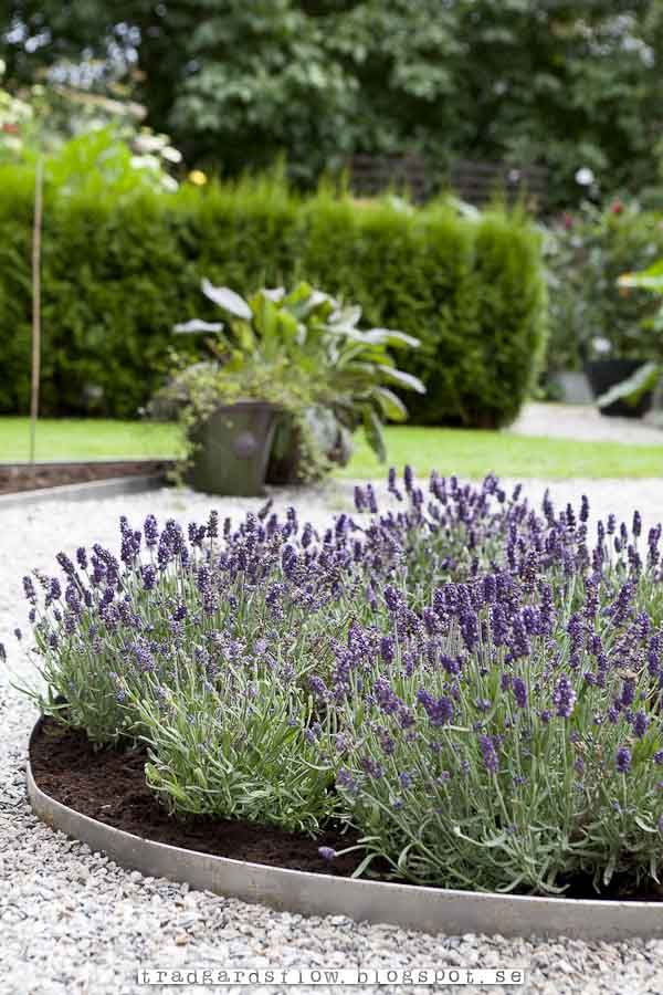Trädgårdsflow: Grus