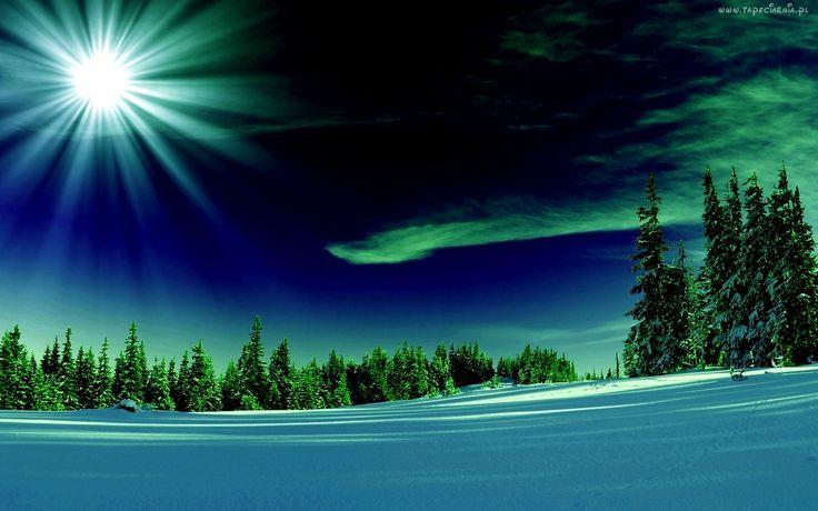Las, Promienie, Śnieg, Zima, Zorza Polarna