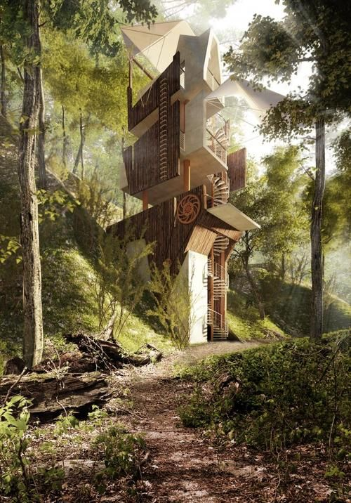 Tree House | JaAction55