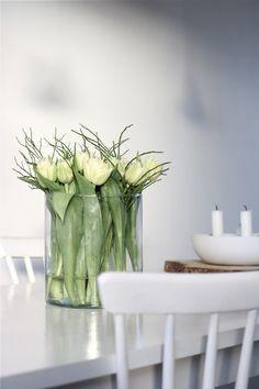 flowers, easter, tulips, white, green