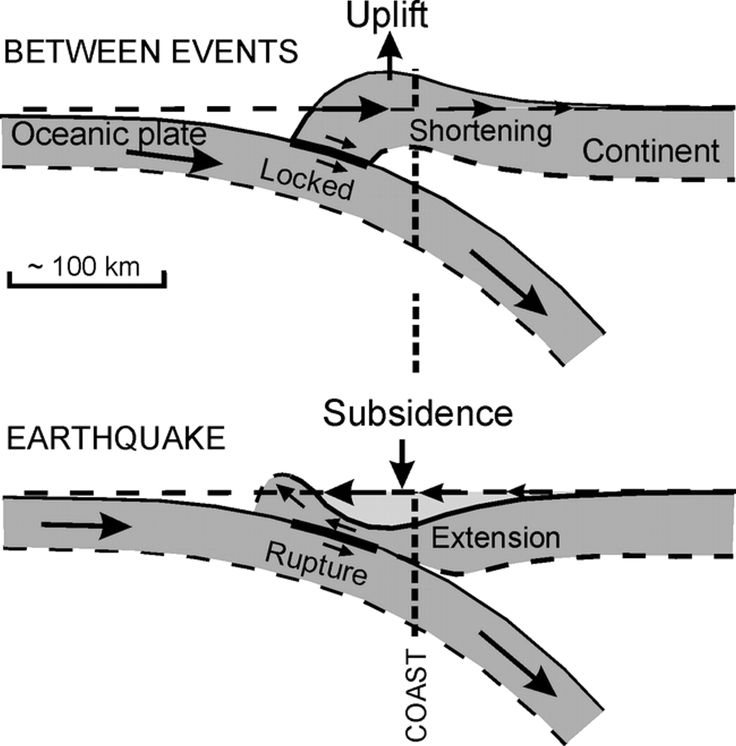 Cascadia Subduction zone and why our elevation after the quake might be lower then before the quake.