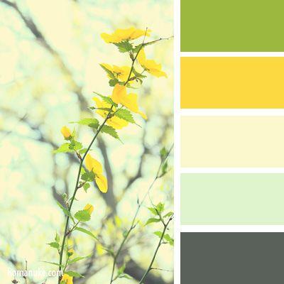 Желтый | IN COLOR BALANCE | Page 14