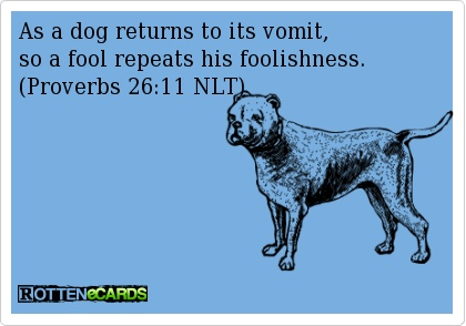 As a dog returns to its vomit,so a fool repeats his foolishness. (Proverbs 26:11 NLT)
