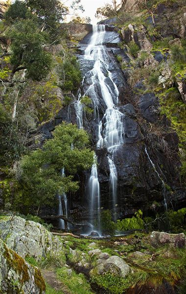 John Tiddy Photography:  Clematis Falls Grampians National Park. Victoria Australia