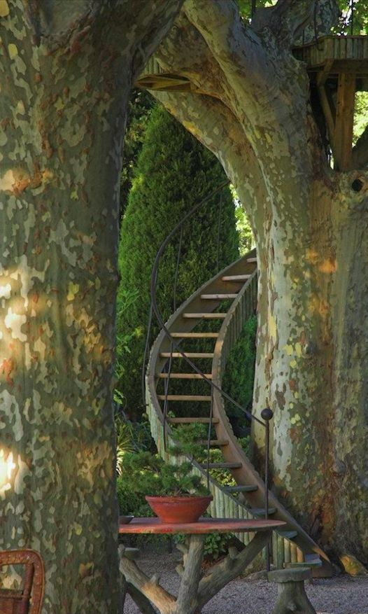 Stairway to the trees in Provence, France • photo: Dominique Lafourcade on Tuindesign http://artisanschauffagiste.com/plombier34/plombier-marseillan.html