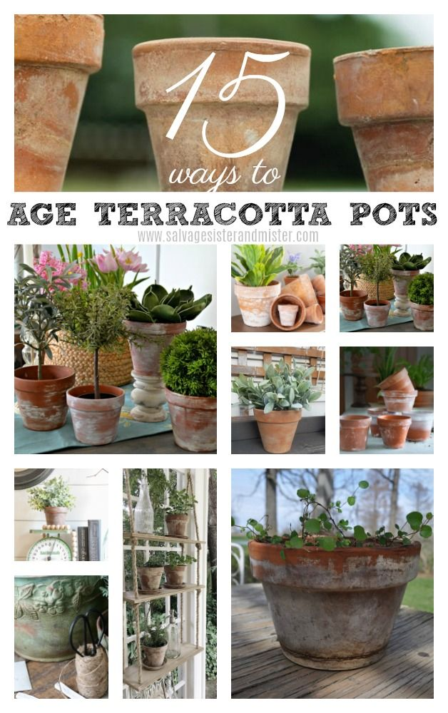 15 Ways To Age Terracotta Pots In 2020 Terracotta Pots Terra Cotta Pots Garden Diy Terra Cotta Pots