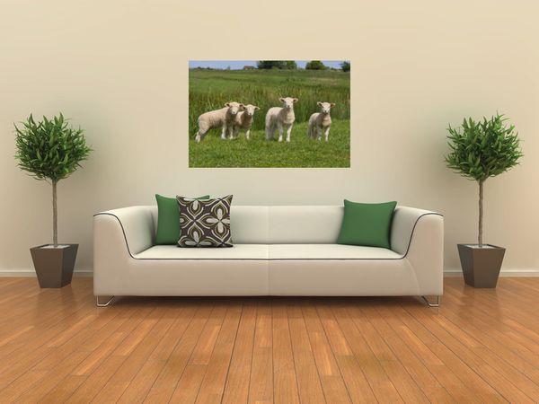 60 best images about decoraci n de oficinas on pinterest for Stickers para decorar habitaciones