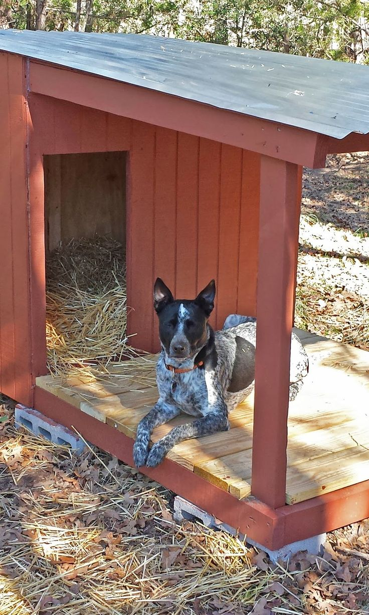 DIY Attempt: Country Dog House with Porch