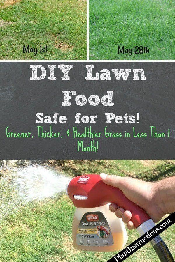 DIY Lawn Food: 100% Safe & Cheap   Yard   Lawn fertilizer, Lawn care