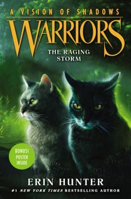 Cover Image For The Raging Storm New Junior Fiction Non Fiction In