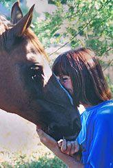 Author photo for Vicki Mathison