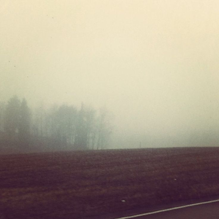 Lonely mist