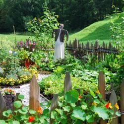 Die besten 25+ Gemüsegarten Layouts Ideen auf Pinterest | Garten ...