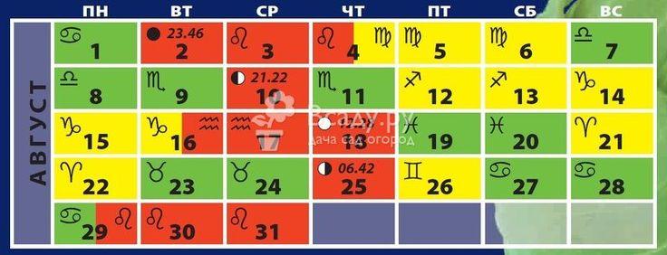 Лунный календарь на август 2016 для огородников