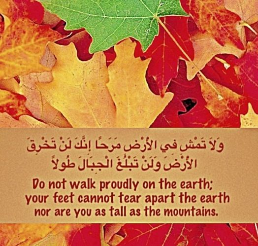Don't walk proudly on the earth