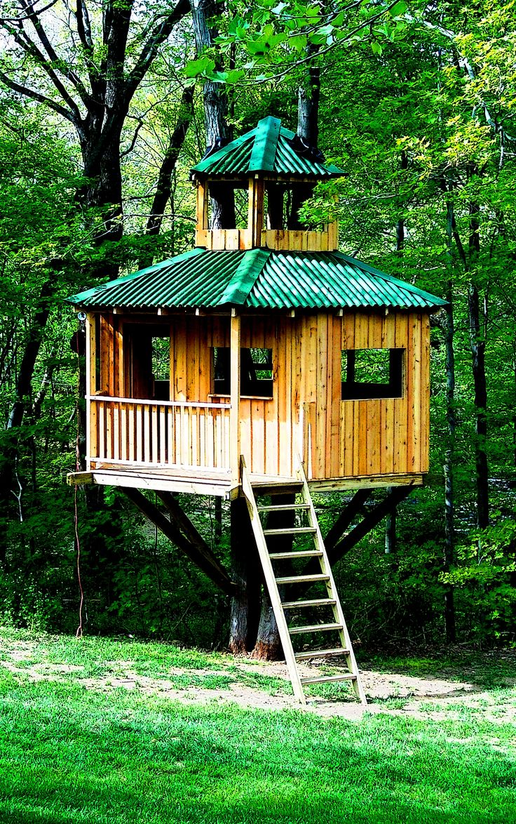 Attractive A Fancy Board And Batten Tree House With Ondura Roofing. Cupolas Are Always  Cool Too