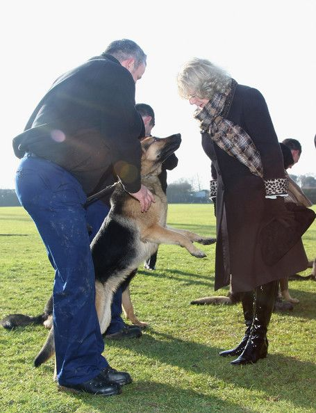 Camilla Parker Bowles - Duchess of Cornwall Visits The Metropolitan Police Dog Training Centre