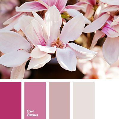 bright pink color, color combination, color matching, color of sugar candies, color palette, dark-red color, light pink color, lilac color