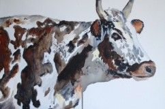 Nguni - Nguni cattle play an important role in Zulu celebrations, and particularly in Zulu marriages. Lobola is the price paid for a bride - traditionally in livestock - and is negotiated whenever a wedding takes place. Medium: Acrylic on Canvas Size: 61cm x 51cm www.shellywillingham.com