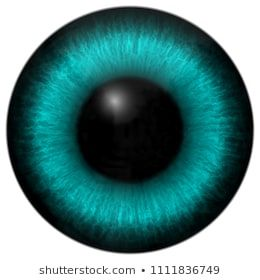 Stock Photos, Illustrations, and Vector Art similar to Set Eyes Like Alien Creature – 224209474 | Shutterstock
